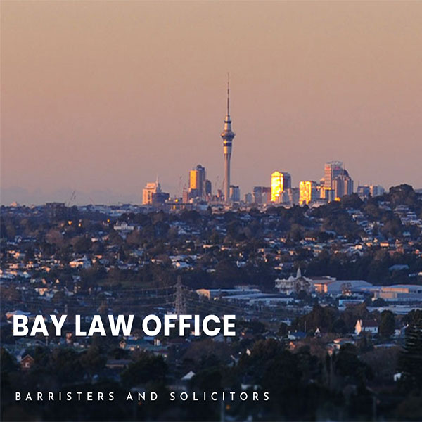 Bay Law Auckland website design + photography